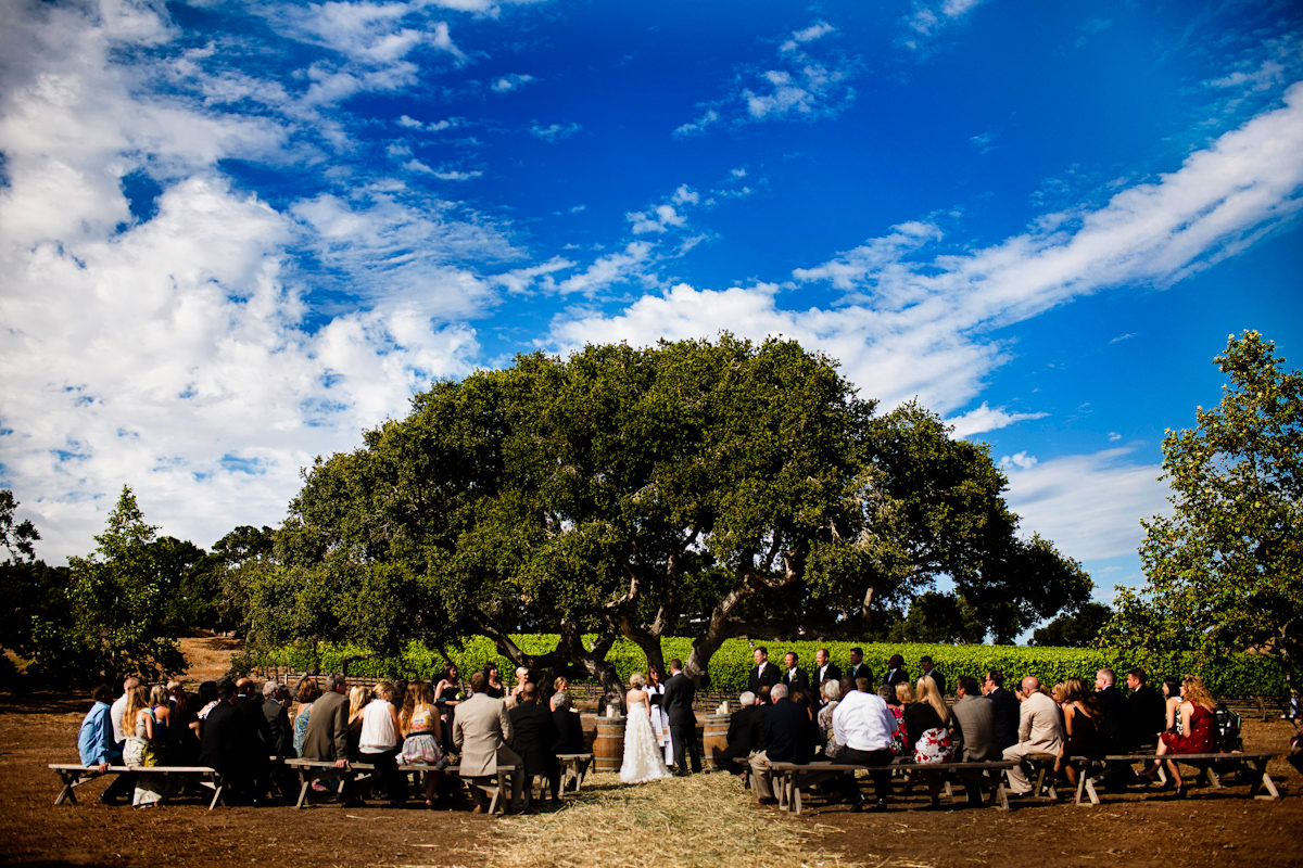 05_vineyard-wedding-photos