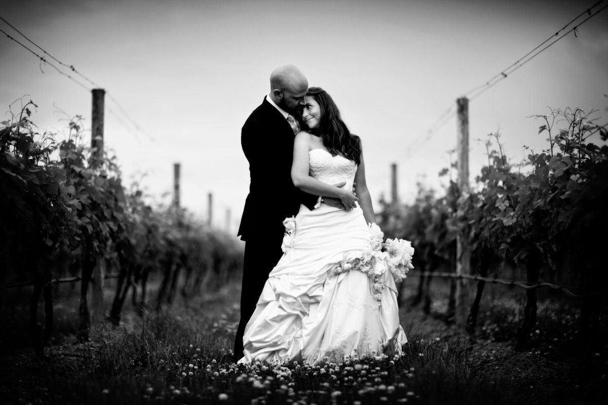 29_vineyard-wedding-photos