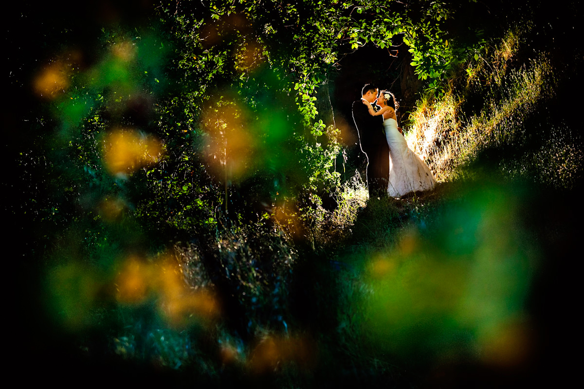 45_vineyard-wedding-photos