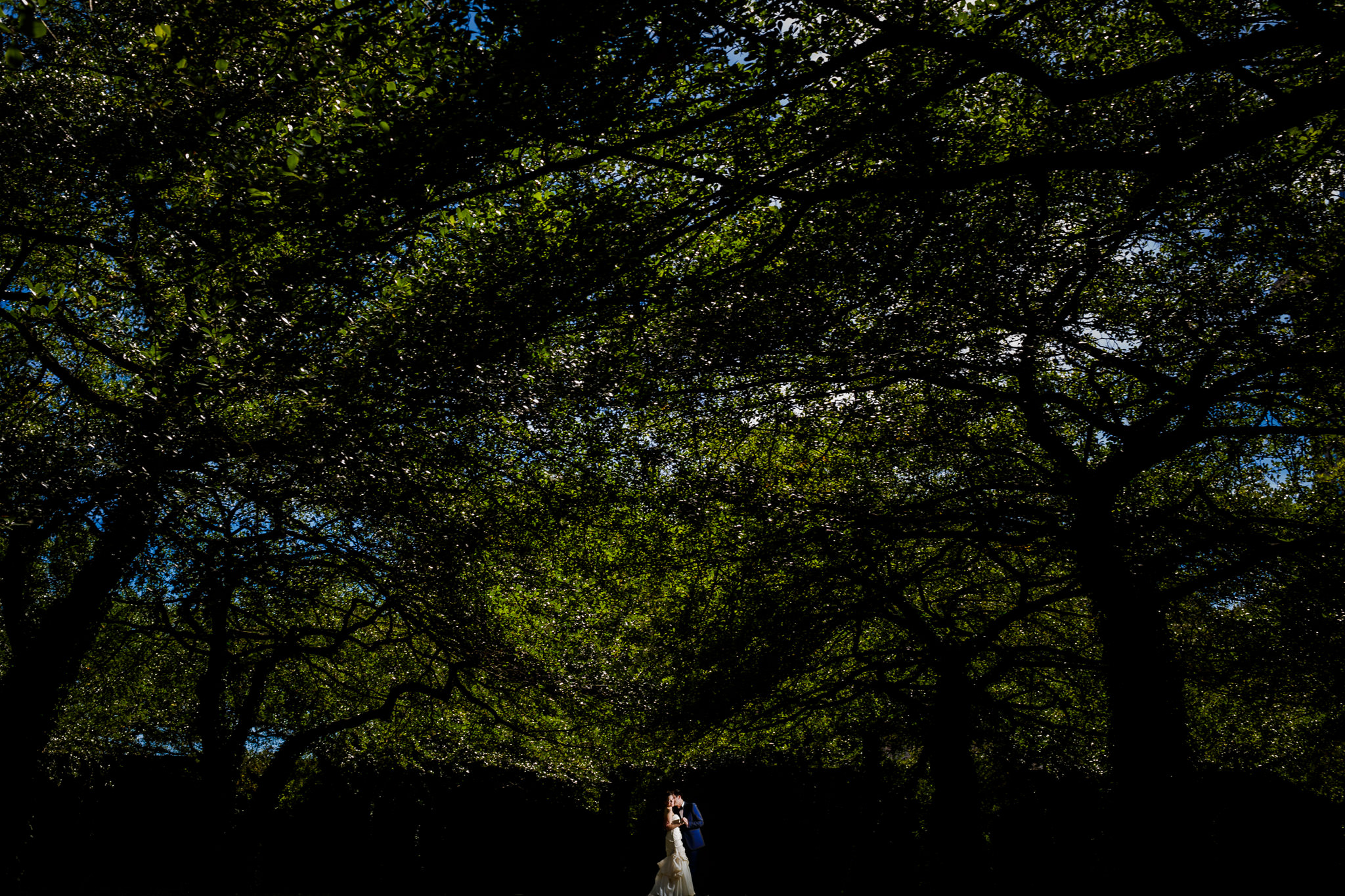 01-elena-david-renaissance-blackstone-chicago-wedding