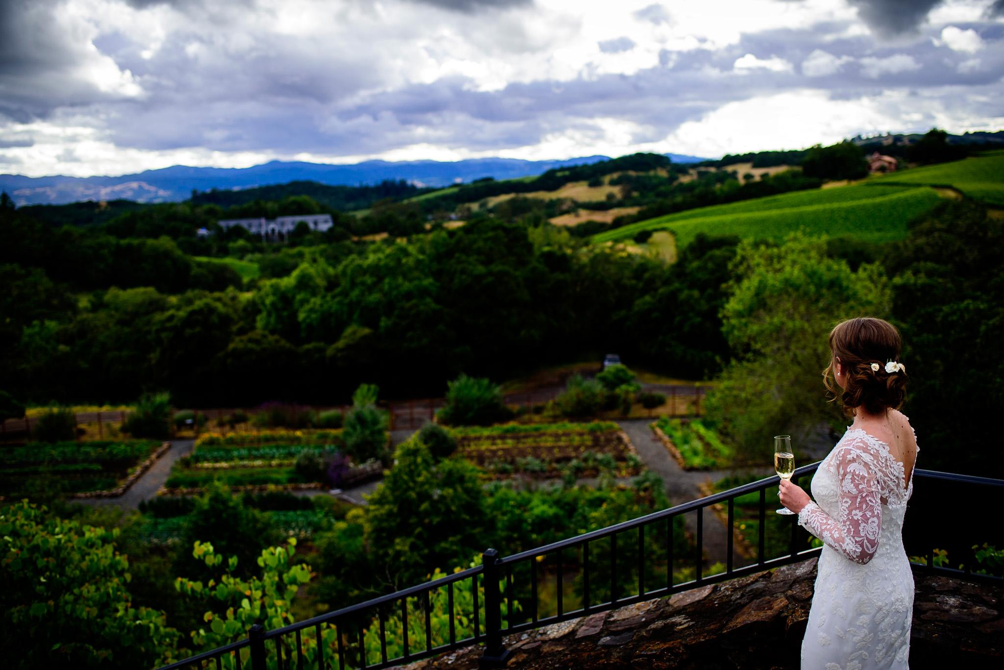 32-robyn-andy-chalk-hill-estate-wedding