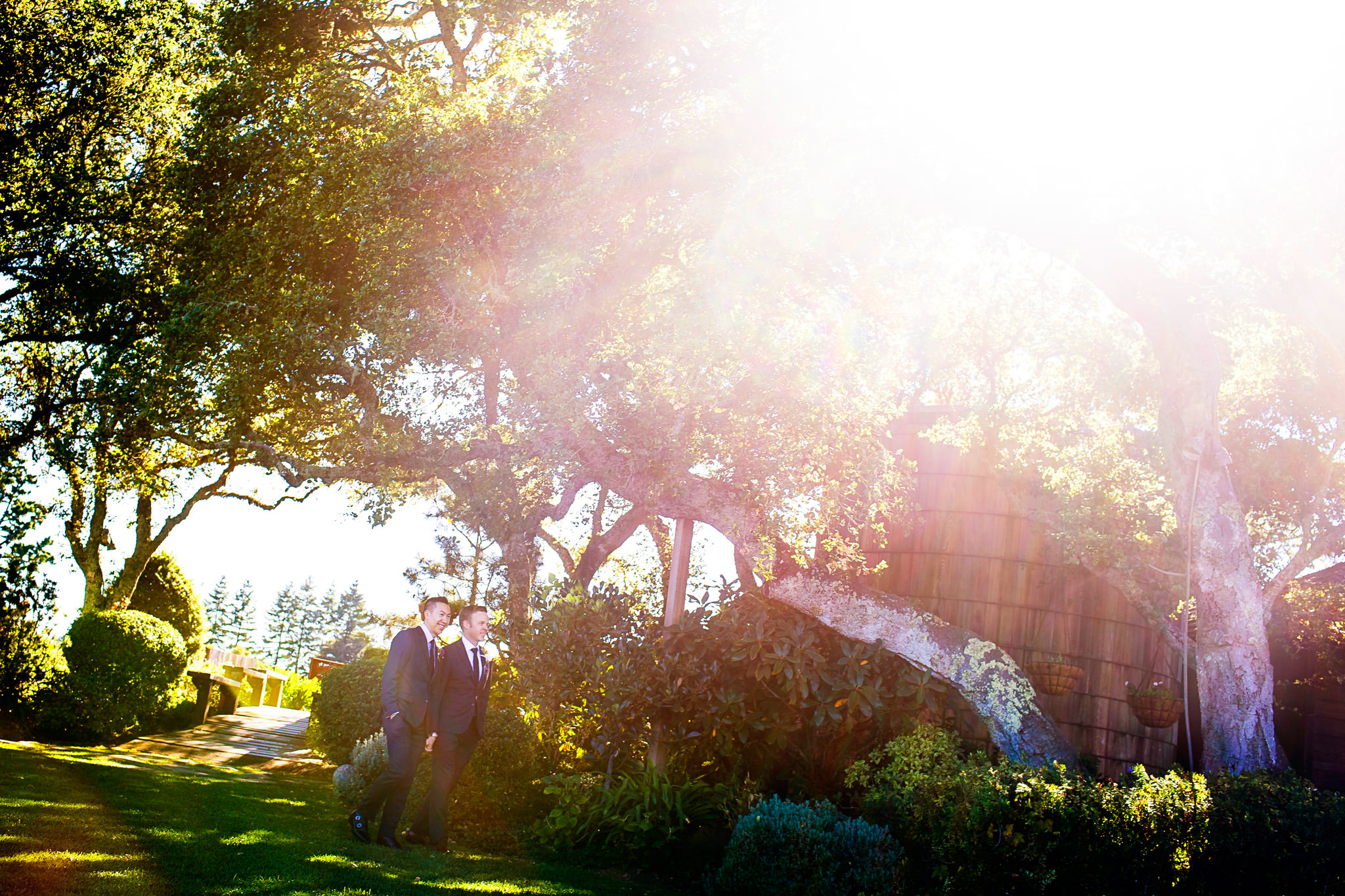 Chris and Daniel's wedding at Thomas Fogarty Winery in Woodside, CA.